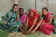 विश्व वातावरण दिवस कार्यक्रम तस्वीर